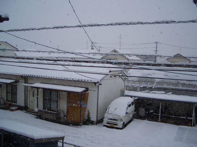 snow_2014-02-08.jpg